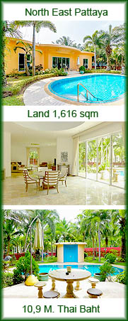 Sculpture Park House with big land for sale pattaya