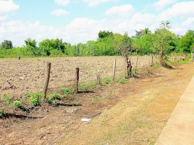 Land for sale in Udon Thani, Kutchap
